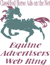 Equine Advertisers Web Ring